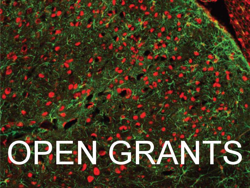 Open Grants - IBRO